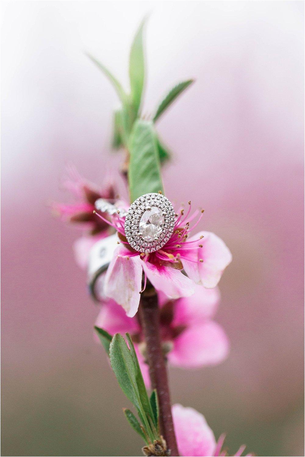Niagara-on-the-lake-cherry-blossom-farm-Engagement-Session-Toronto-Mississauga-Brampton-Scarborough-GTA-Pakistani-Indian-Wedding-Engagement-Photographer-Photography_0033.jpg