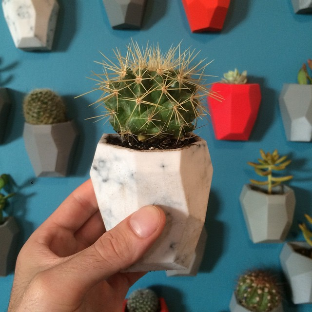 Got our green thumbs out for #bushwickopenstudios    #3DPrinted #3DPrinting #3DBrooklyn #3DBK #Design #Brooklyn #ProductDesign