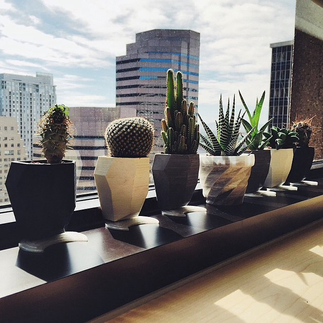 Awesome shot by @nickroosen of some of my faceted planters overlooking Denver! Available from my site - link in bio #3DPrinted #3DPrinting #3DBrooklyn #Planter #Design #Facet #Plant #Cactus #Succulent