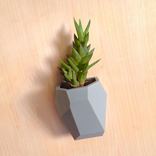 Modular Wall Planter #3DPrinted #3DPrinting #3DBrooklyn #Cubify #Design #Brooklyn #ProductDesign #Succulent #Planter #Modular