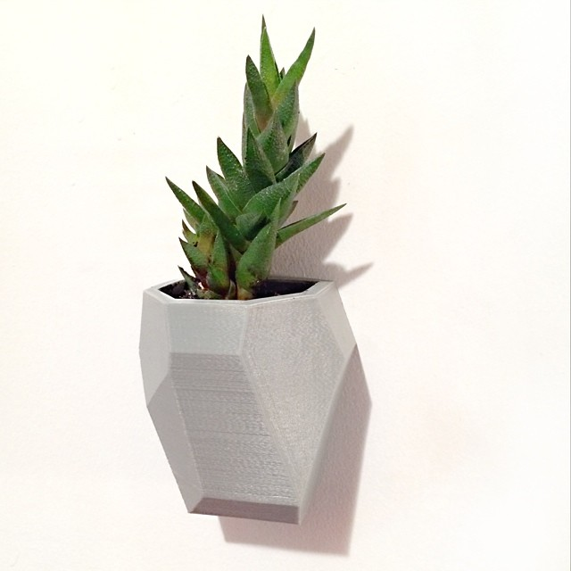 new modular wall planter    #3DPrinted #3DPrinting #3DBrooklyn #Plant #Design #Brooklyn #ProductDesign #Modular #Planter #Succulent