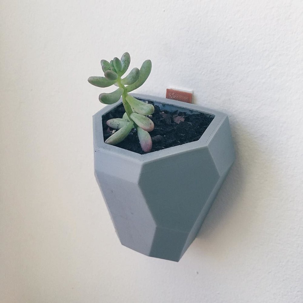Hanging Wall Planter] Best 25 Wall Planters Ideas On Pinterest .