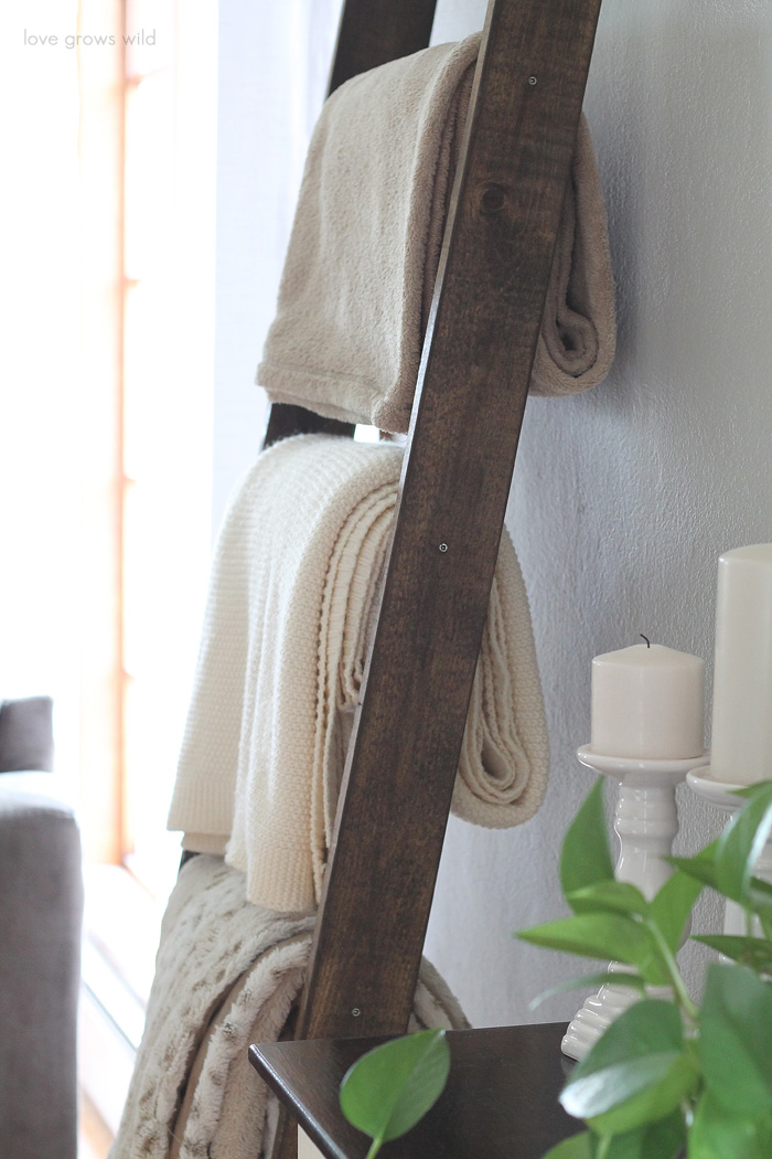 DIY-Blanket-Ladder-4.jpg