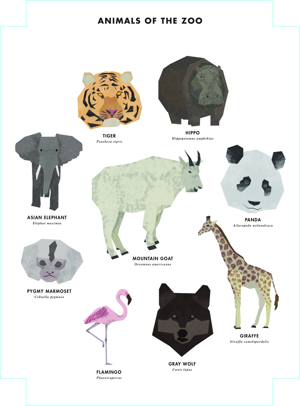 animals_of_the_zoo.jpg