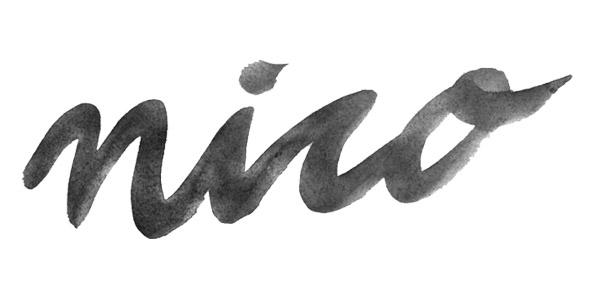 nico_logo.jpg