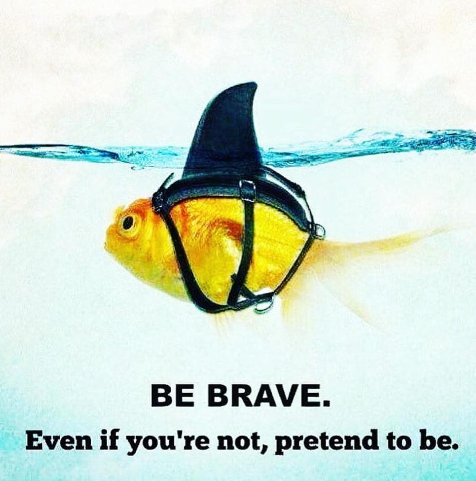 be brave even if you re not pretend to be do re me creative