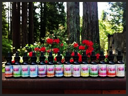 """I Love Myself"" Herbal Tinctures"