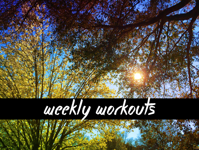 weekly-workouts-3-22-15.png