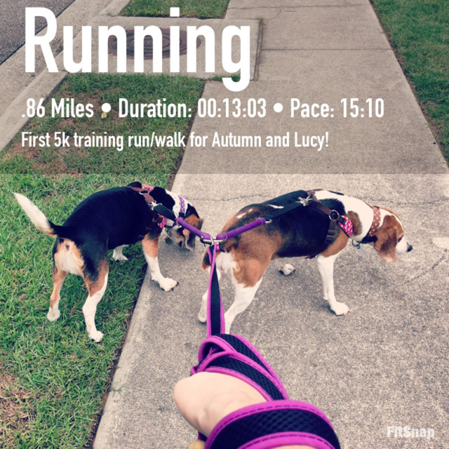Lucy-and-Autumn-running.jpg