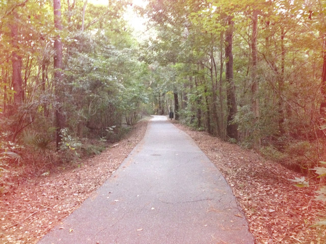 running-path.jpg