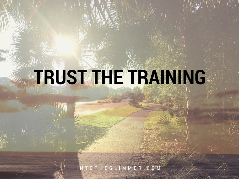 trust-the-training