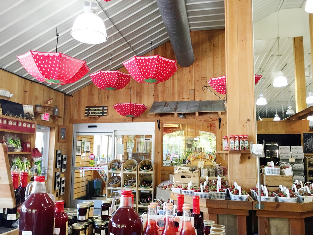 Boone Hall Market During the Strawberry Festival
