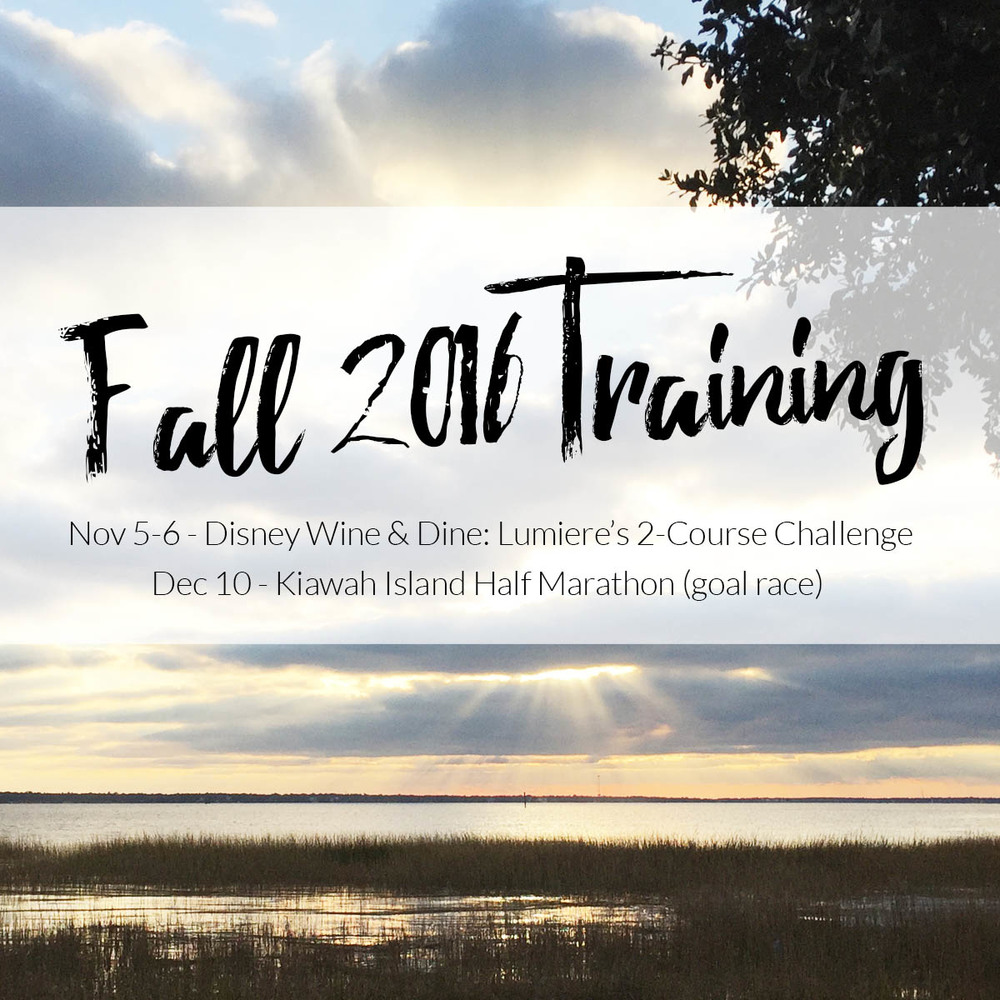 fall 2016 training