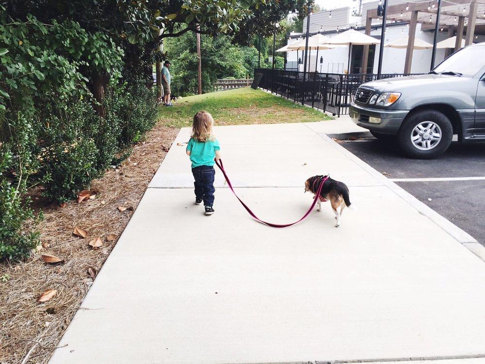B loves walking Meadow