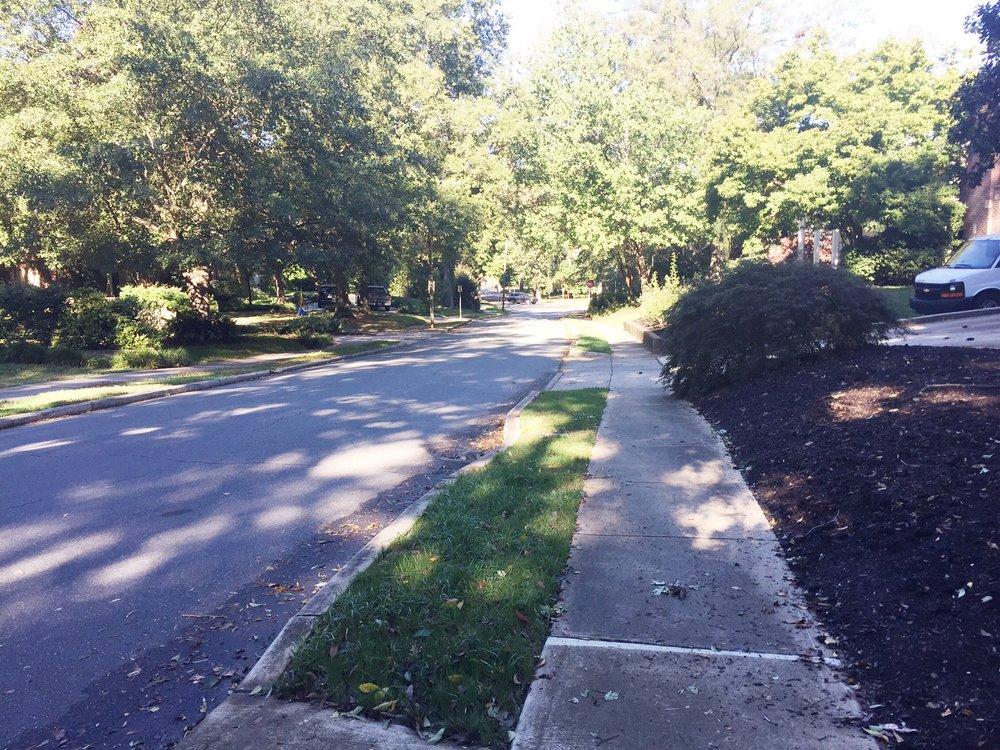 Hillside Ave - my favorite Hill in Charlotte