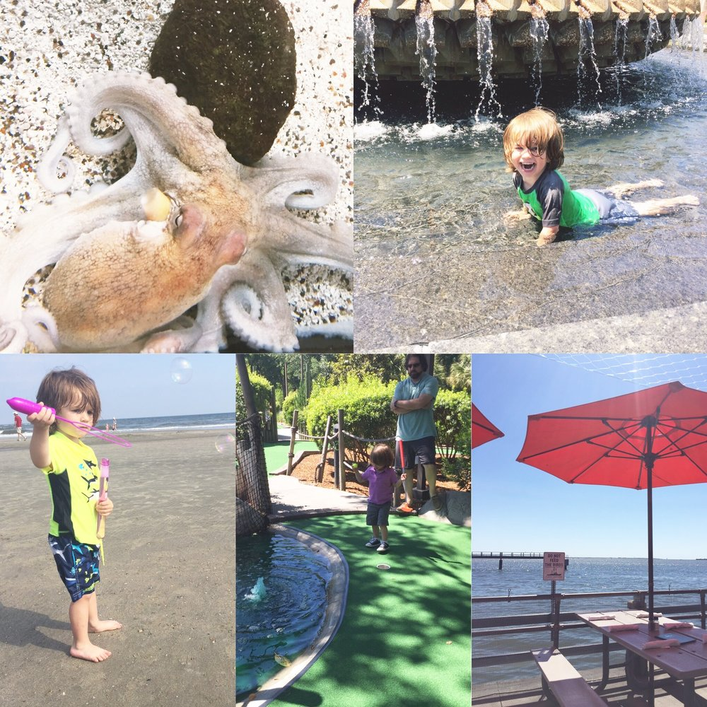 Clockwise from the top left: The octopus was out at the aquarium, Fun at the pineapple fountain, Beach bubbles, Mini golfing with a 2 year old, the view from fleet landing