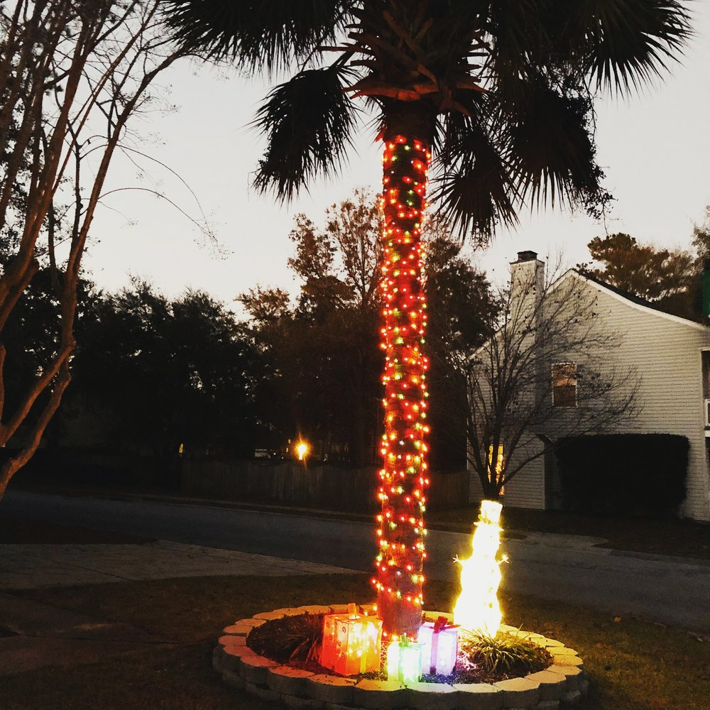 How we do christmas in the South - palm trees and snowmen