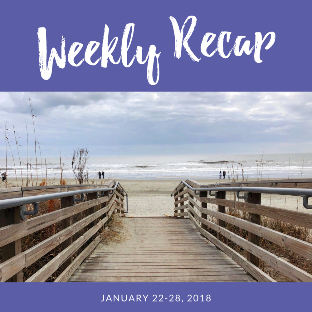 weekly recap january 22-28