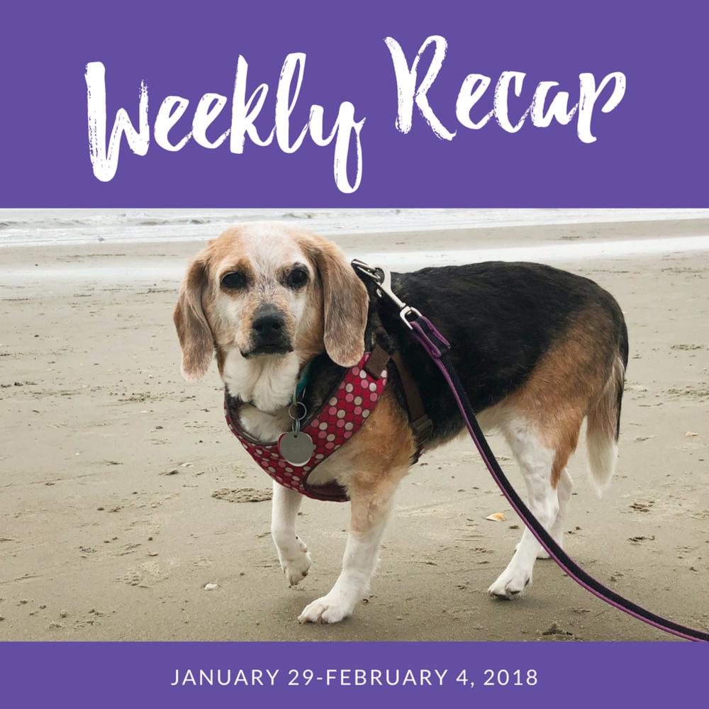 weekly recap january 29-february 4