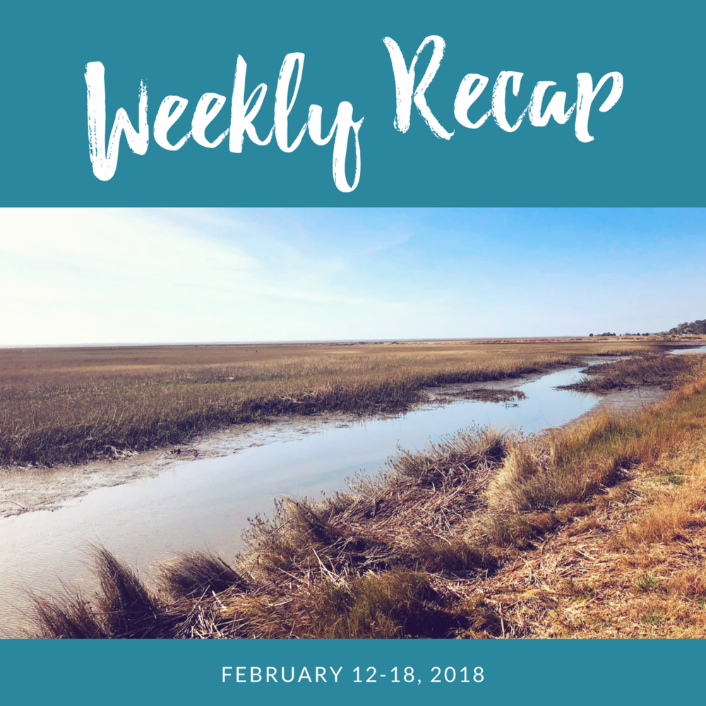 weekly-recap-lowcountry-views