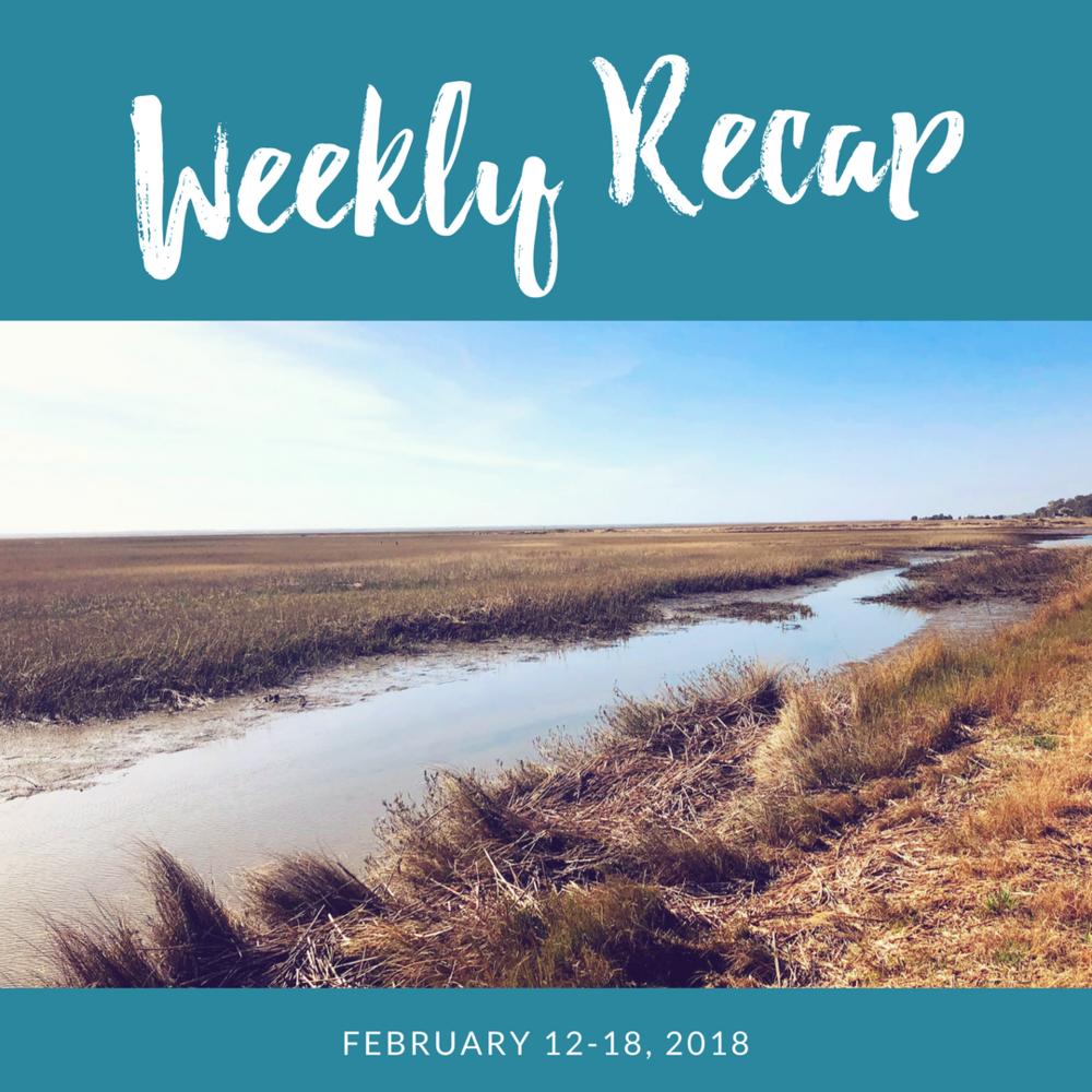 weekly-recap-lowcountry-views