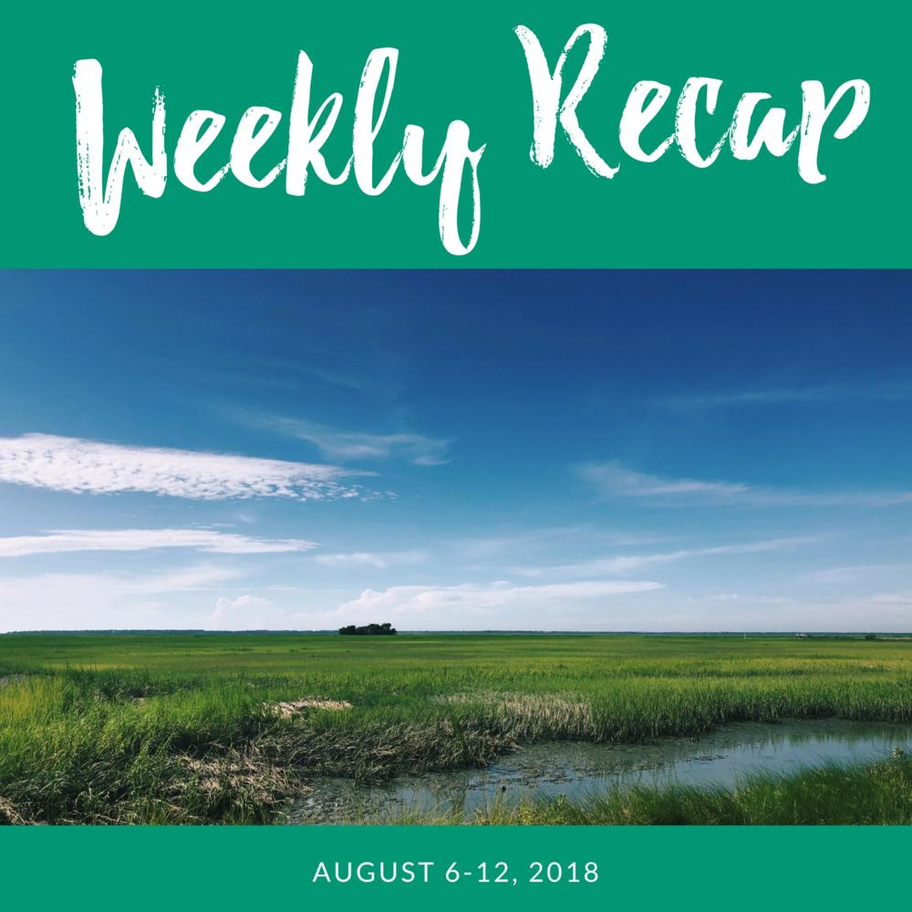 weekly-recap.png