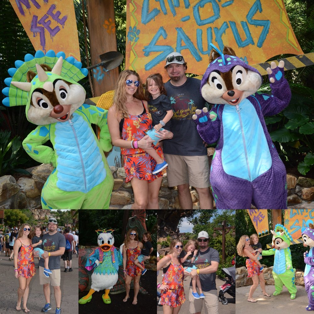 Animal Kingdom Family Photos
