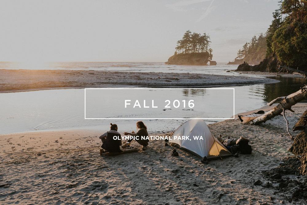fall16.jpg