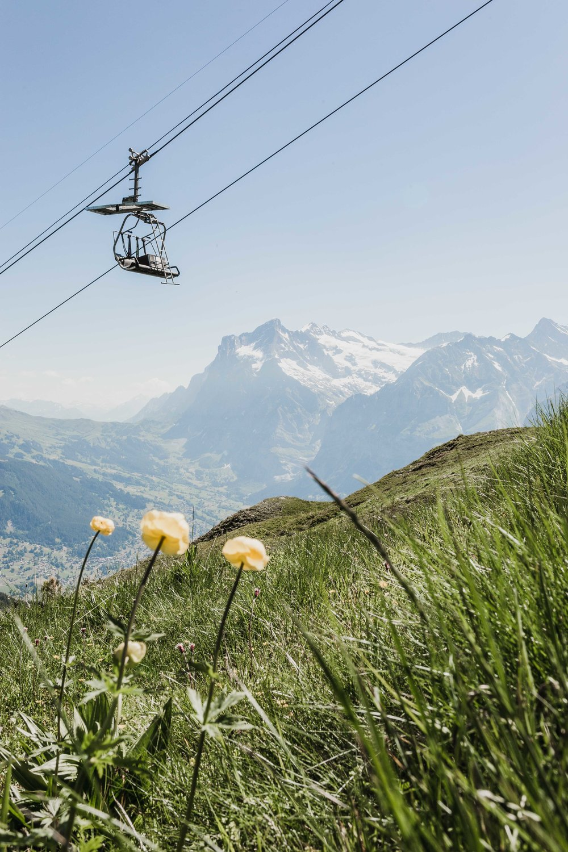 Switzerland94_1MB.jpg