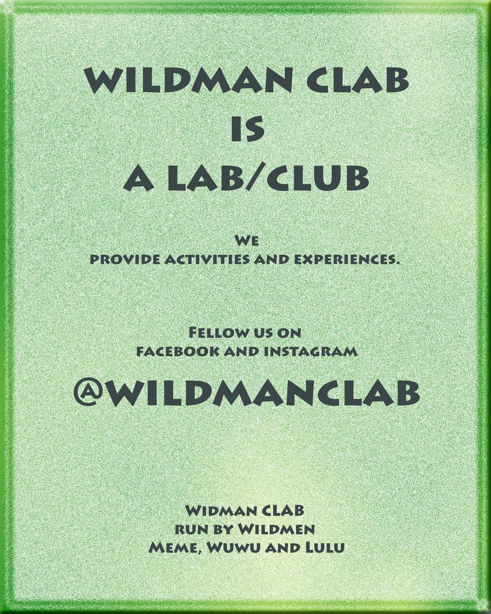 wildmanclab intro poster copy.jpg