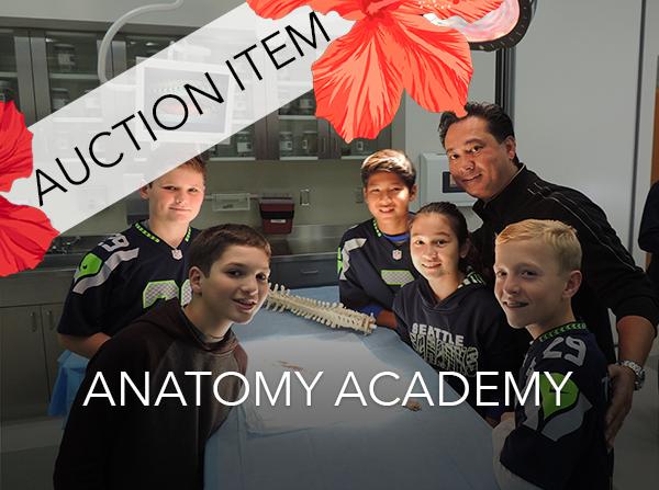 AnatomyAcademy.png