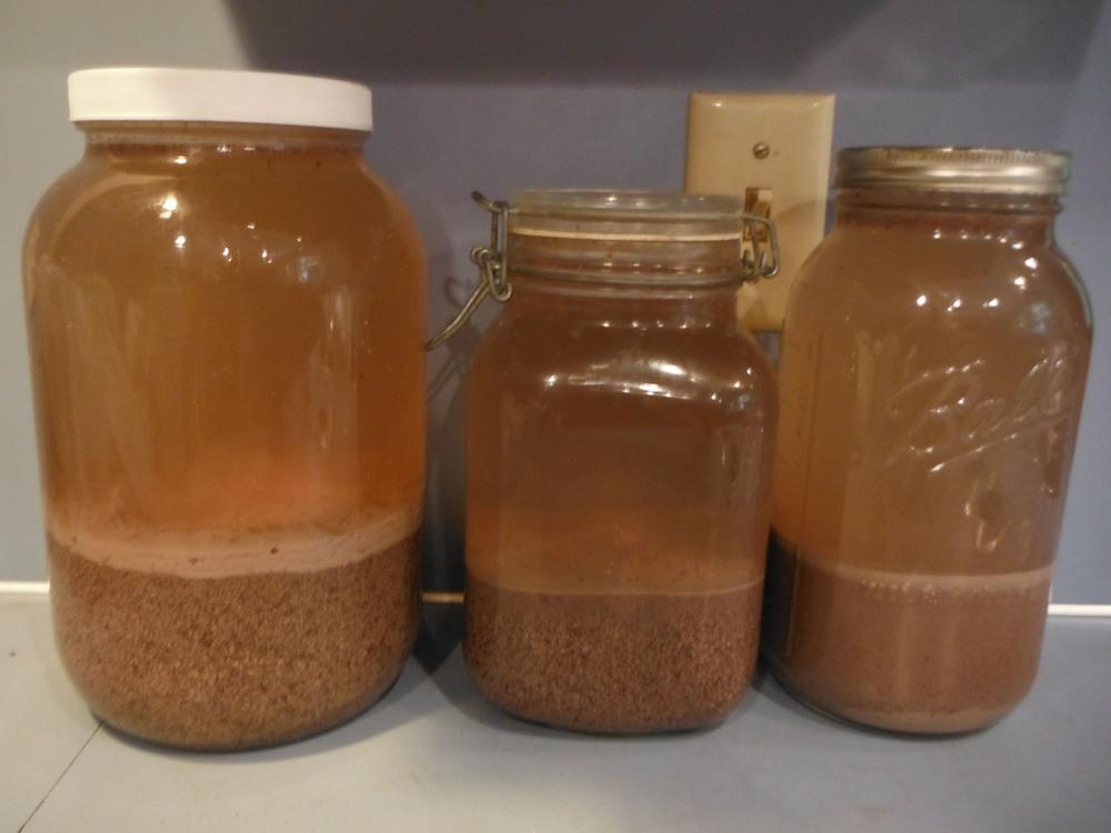 Acorn Flour leaching