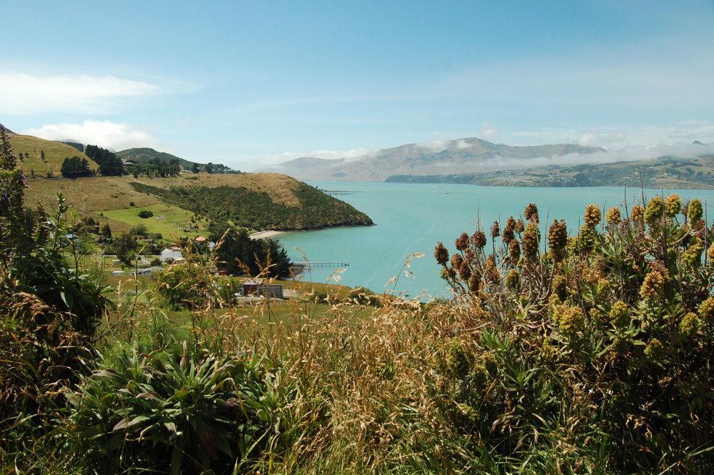 Rapaki Bay