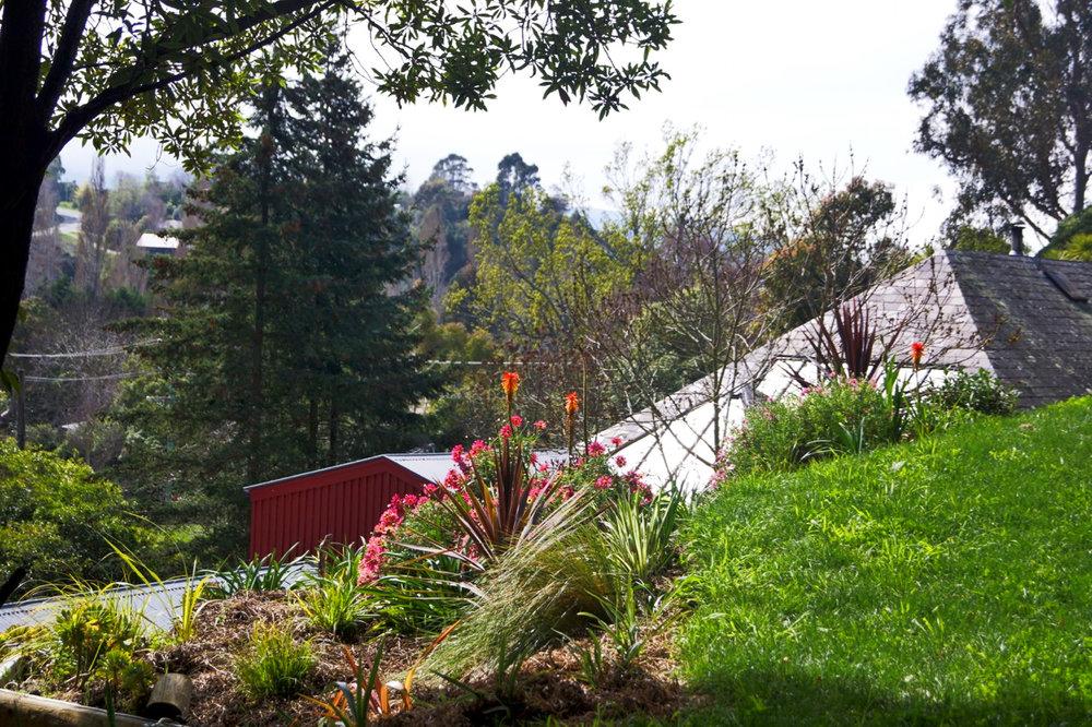 house behind upper garden.jpeg