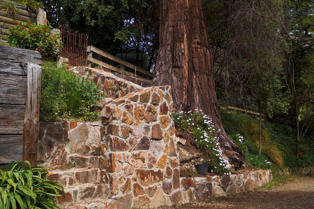 rock staircase 2.jpeg