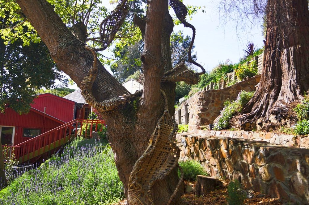 Tree Sculpture.jpeg