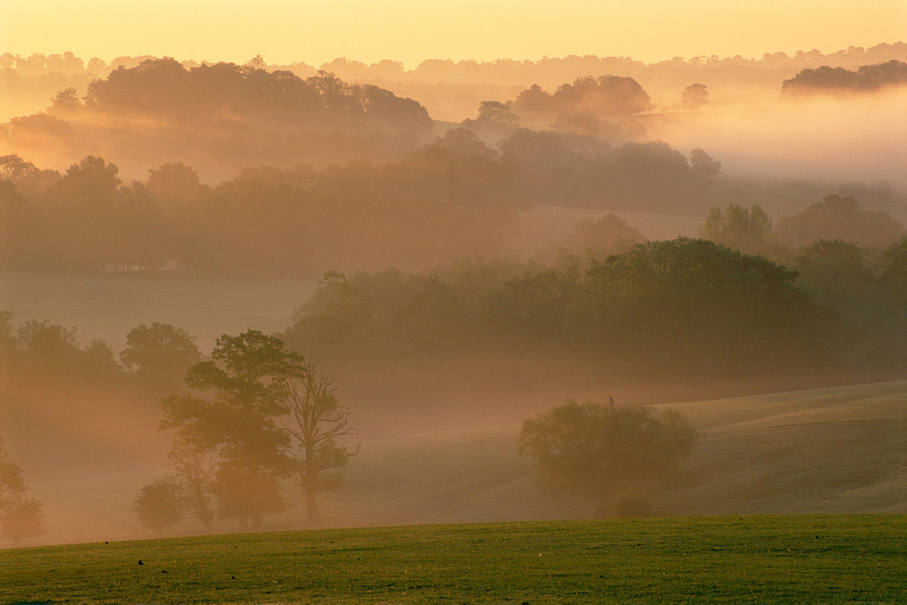 Dawn mist over pasture and mixed woodland, Sussex, England