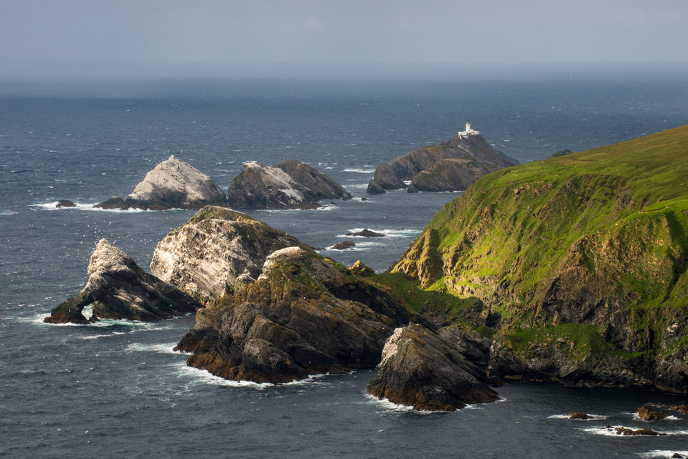 View across Northern gannet breeding colonies on rocky islands towards Muckle Flugga lighthouse, Hermaness National Nature Reserve, Unst, Shetland Islands, Scotland