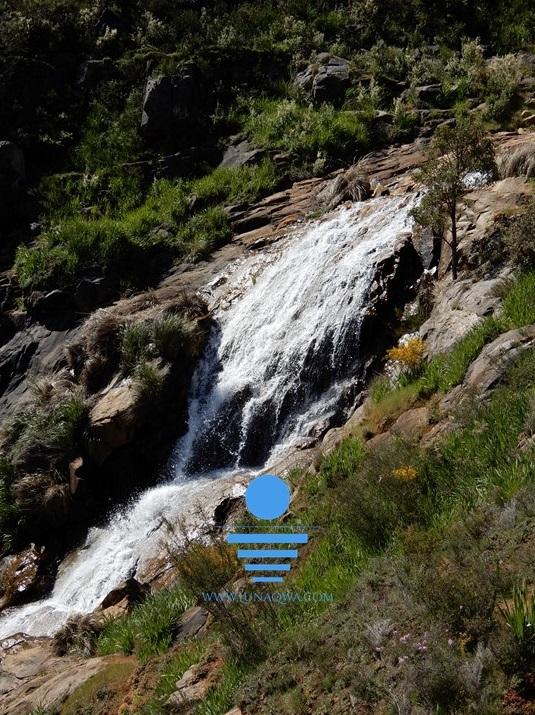 'Spring Falls' - SOR-007 - Large