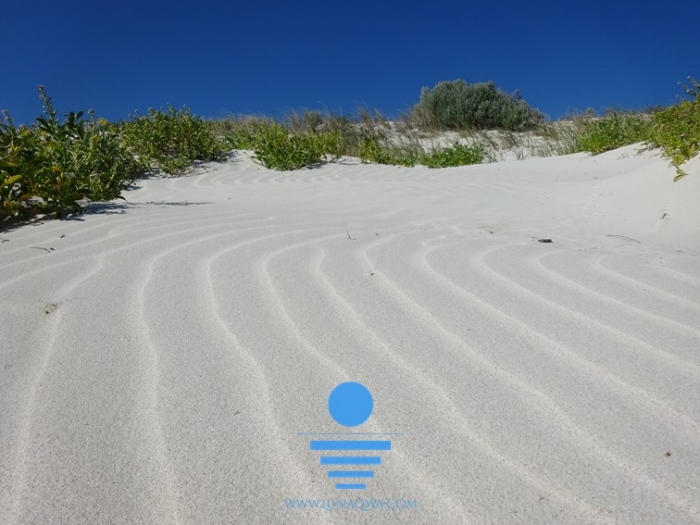 'Silver Sand' - MM-018 - LARGE