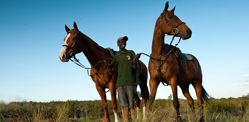 Horses_-_sundowners_copy.jpg