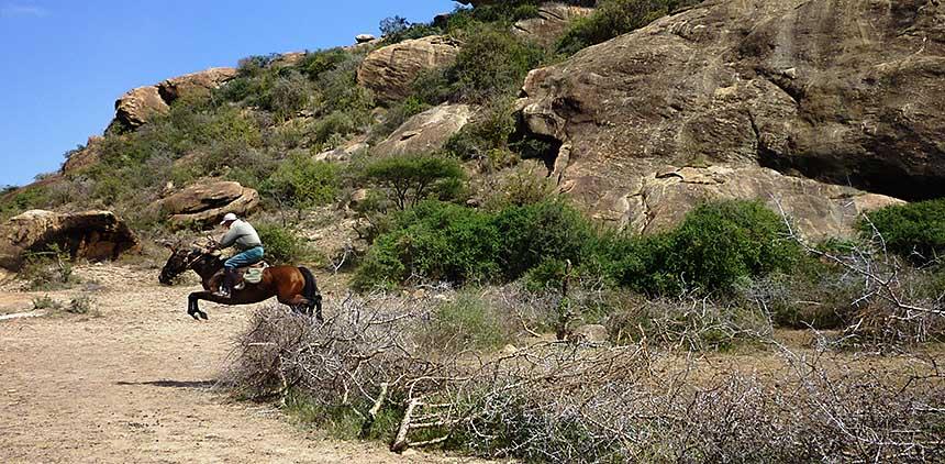 Amboseli_09__2_.JPG