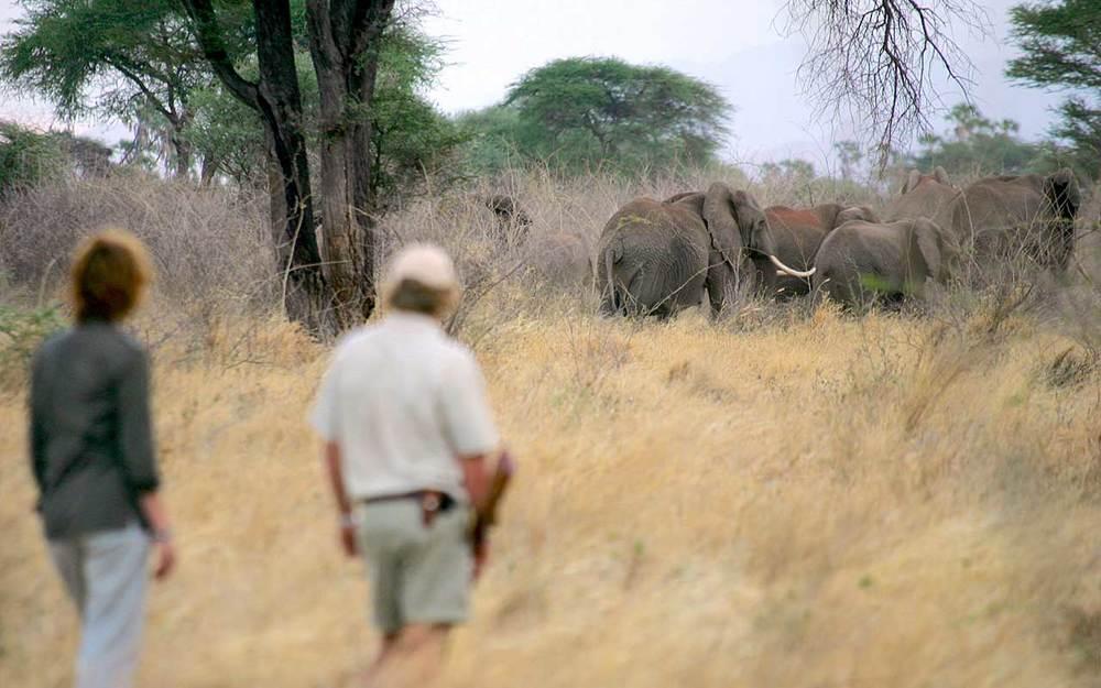 Offbeat Meru   ...privileged encounters from foot