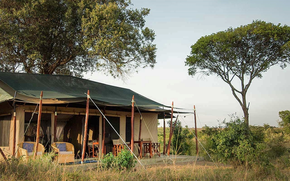 Traditional Safaris   Offbeat Mara Camp, Mara North Conservancy