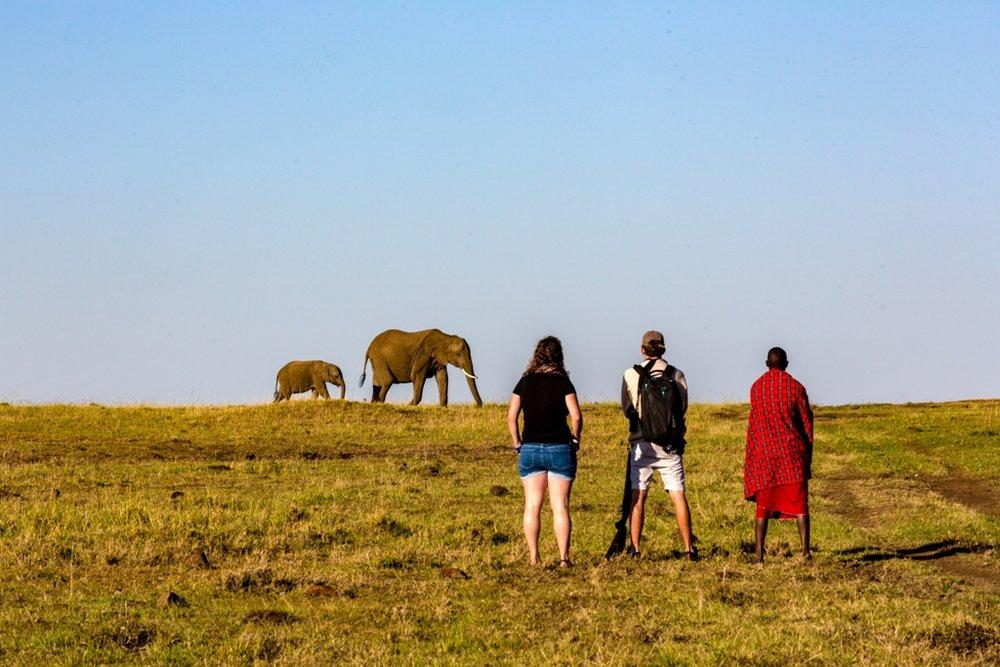 Walking with elephant.jpg