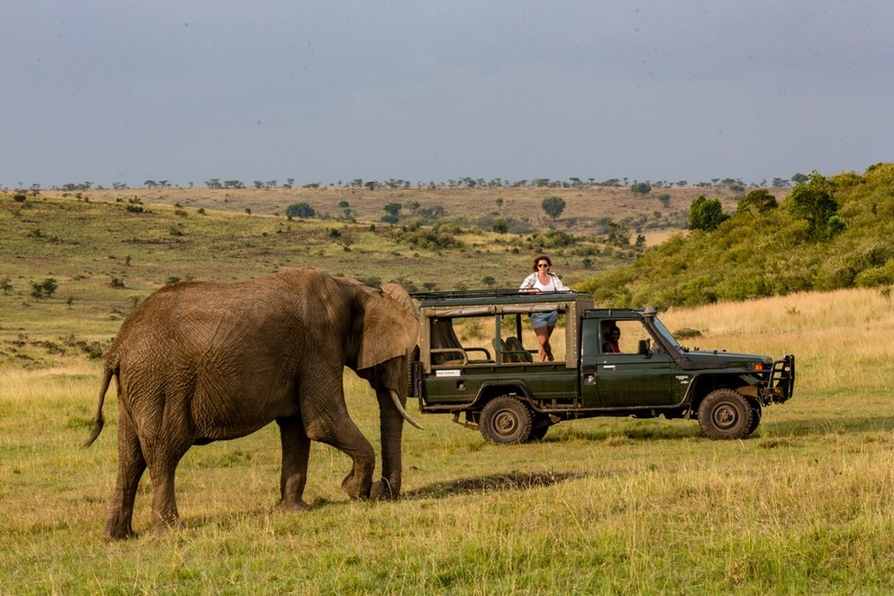 Offbeat Mara   ...exploring the Mara North Conservancy