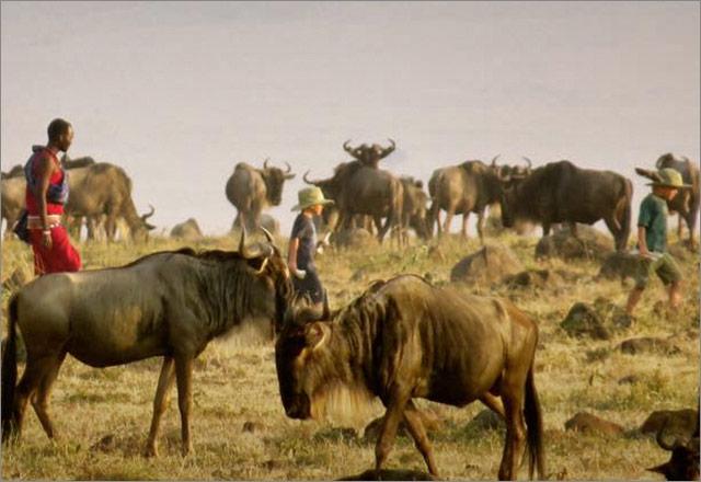 Nadege-kids-&-wildebeest.jpg