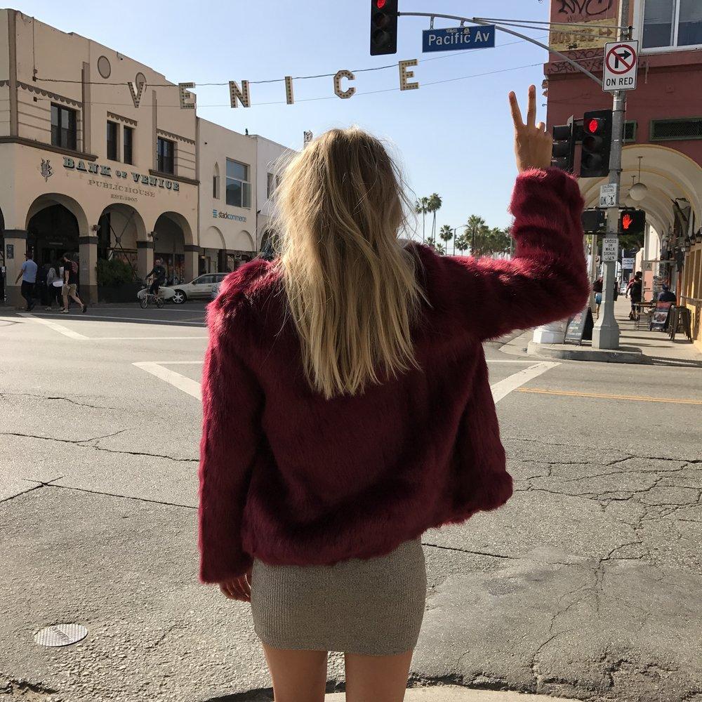 Elyse Knowles in LA 2016_8838.JPG