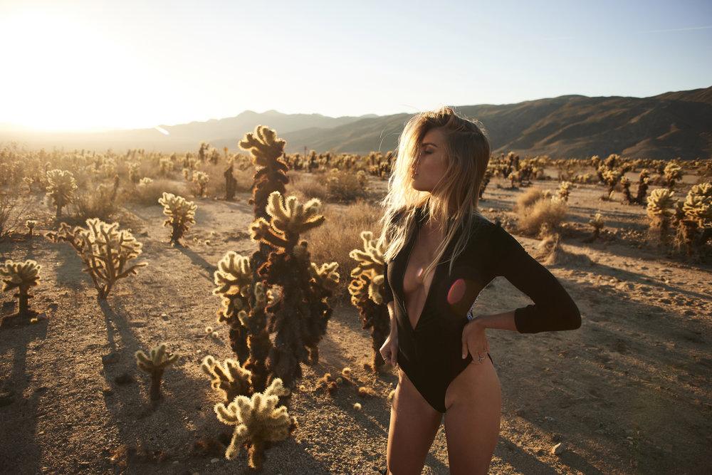 LA Desert by Higgsy
