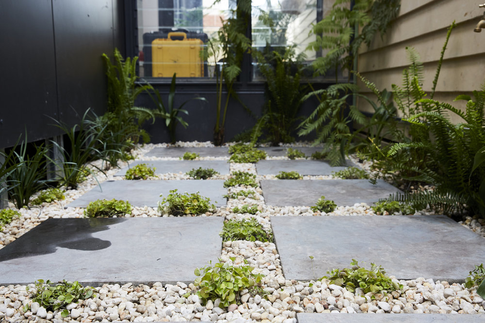 H5 RM10 Back Garden Josh _ Elyse-99.jpg
